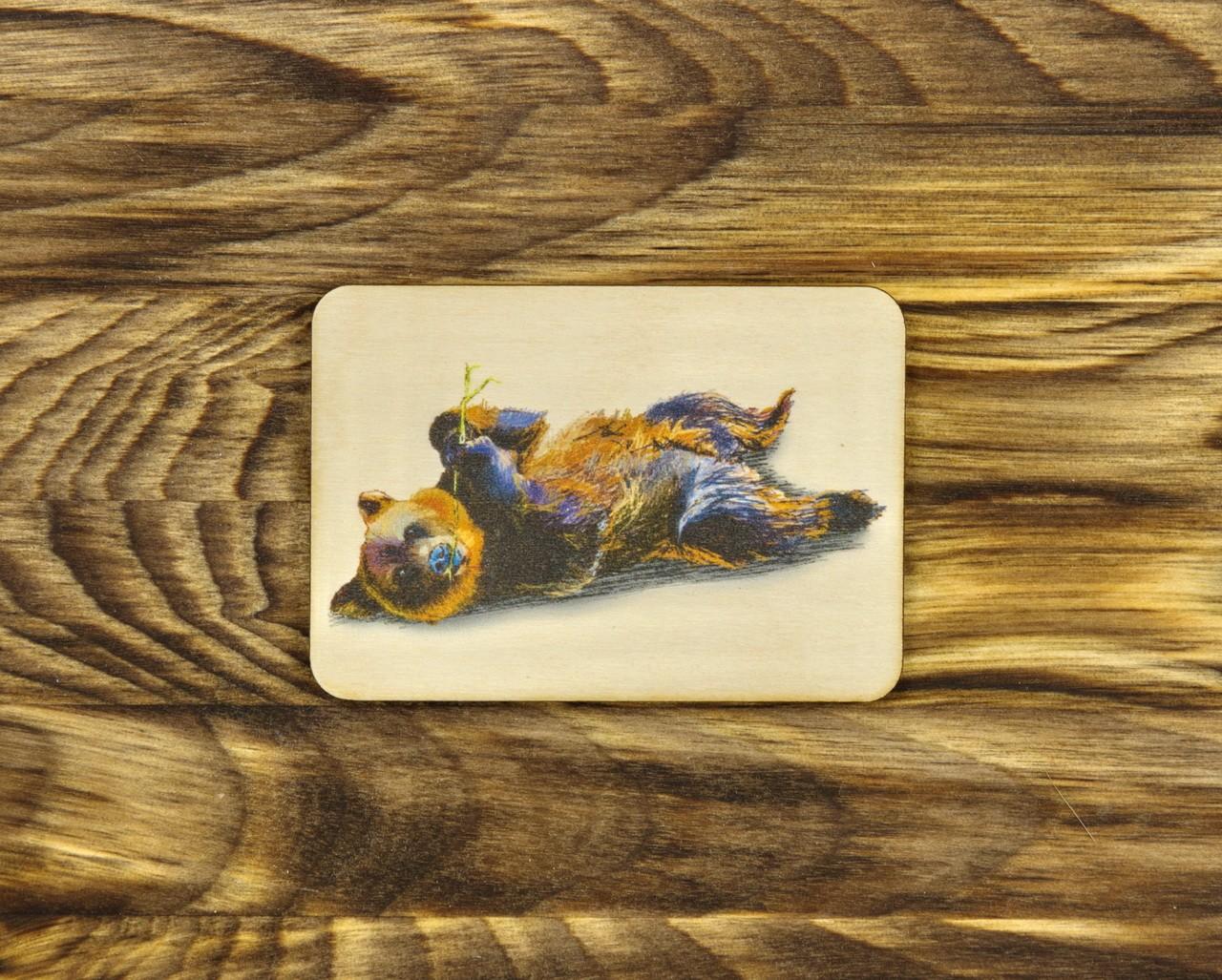 """Деревянный магнит """"Бурый медведь"""" прямоугольный"""